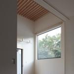 大きな窓がより開放感を生む